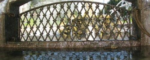 экскурсия Секреты петергофских фонтанов